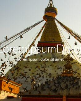 000_didhavn-loremipsum-onepage